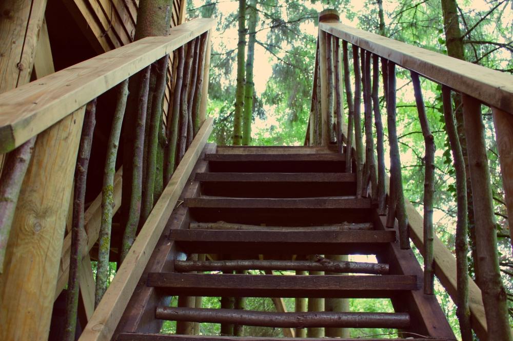 Treehouse steps