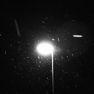 Newton Snow