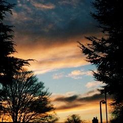 Newton Sunset
