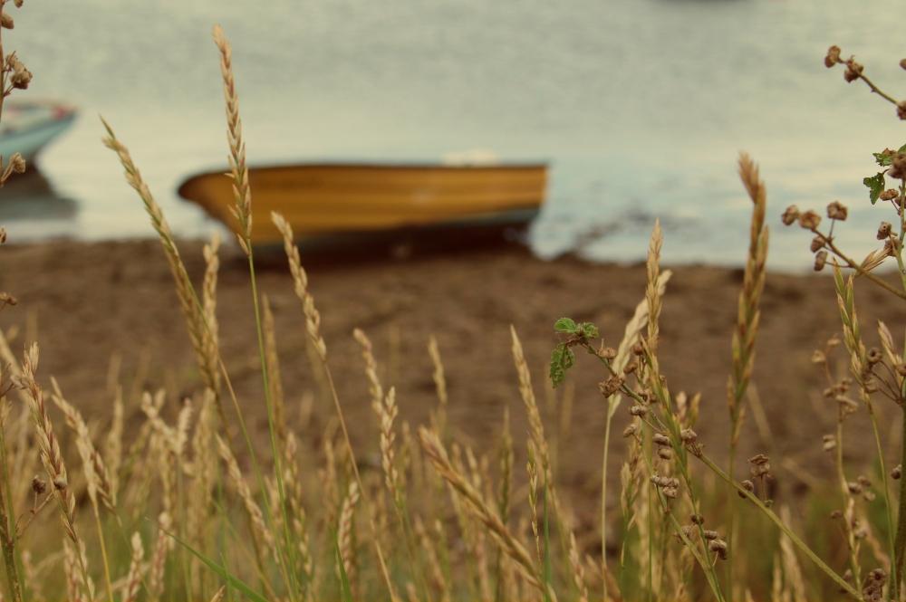 wells-boats-2